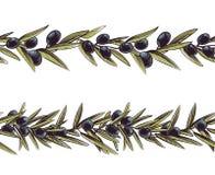 Frontera verde oliva Grecia ramifica vector inconsútil de la rama de olivo del marco stock de ilustración
