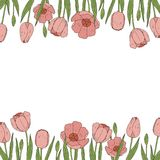 Fronteras de los tulipanes del vector Marco floral ilustración del vector