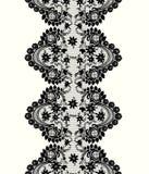 Fronteras florales del cordón Imagen de archivo