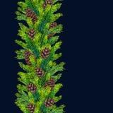Fronteras inconsútiles de Navidad de la acuarela de las ramas y de los pinecones del abeto Foto de archivo