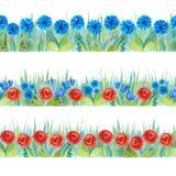 Fronteras inconsútiles florales coloridas Fondo brillante - hierba con las flores rojas y azules stock de ilustración