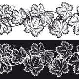 Fronteras inconsútiles ornamentales con las hojas de la uva stock de ilustración