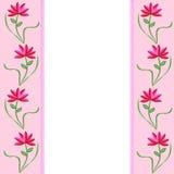 Fronteras rosadas con las flores Stock de ilustración