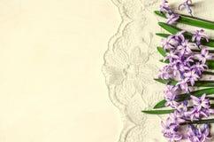 Frontière avec les jacinthes lilas sur le fond de dentelle Image stock
