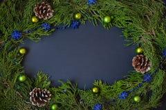 Frontière, cadre des branches d'arbre de Noël avec des cônes de pin et baies bleues Photographie stock