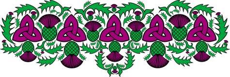 Frontière celtique avec des fleurs du chardon Images libres de droits