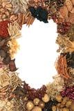 Frontière chinoise de phytothérapie Image stock