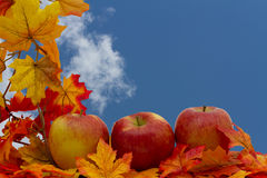 Frontière colorée d'automne Photos stock