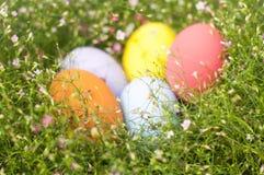 Frontière colorée d'oeufs de pâques par le groupe de fond de fleurs Images stock