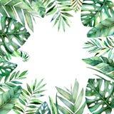 Frontière colorée de cadre d'aquarelle avec les feuilles tropicales colorées Image stock