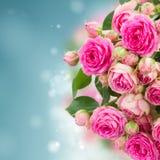 Frontière d'haut étroit de roses roses fraîches photo stock
