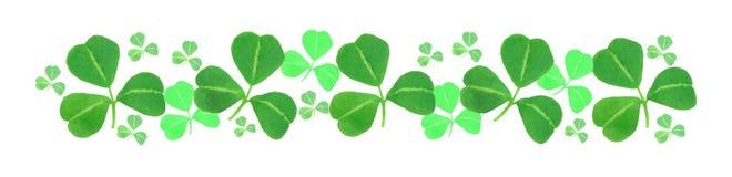 Frontière d'oxalide petite oseille de jour de St Patricks Images libres de droits