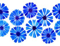 Frontière de bleuet d'aquarelle Image libre de droits