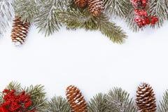 Frontière de cadre de Noël sur le blanc, les branches, les cônes et les baies rouges Photos stock