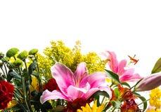 Frontière de fleur Images libres de droits