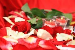 Présent d'amour d'isolement par fond d'art de Saint-Valentin Image libre de droits