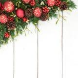 Frontière de fond de Noël avec Flora et la babiole Decoratiions Photos libres de droits
