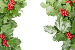 Frontière de houx, décoration de Noël Image libre de droits