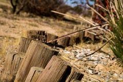 Frontière de jardin de désert images stock