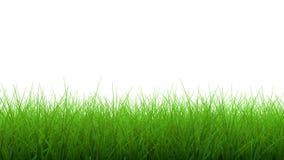 frontière de l'herbe 3d verte Photographie stock libre de droits