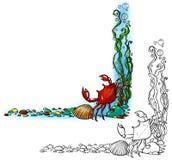 Frontière de mer avec le crabe et la coquille Photo stock
