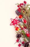 Frontière de Noël avec l'aubépine, l'arbre de sapin et les pommes sauvages Photographie stock libre de droits
