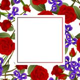 Frontière de Rose rouge et d'Iris Flower Frame Banner Card D'isolement sur le fond blanc Illustration de vecteur illustration de vecteur