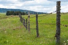 Frontière de sécurité avec le barbelé Barrière dans le domaine Herbe de pré avec des fleurs Photographie stock libre de droits