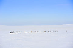 Frontière de sécurité balayée de neige Photographie stock