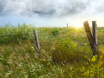 Frontière de sécurité de mère patrie sur les prairies photos stock
