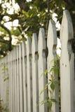 Frontière de sécurité de piquet blanche. image stock