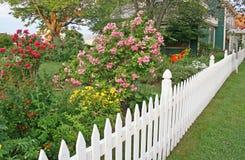 Frontière de sécurité de piquet de Rose Image libre de droits