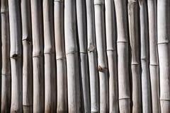 Frontière de sécurité en bambou Photos stock