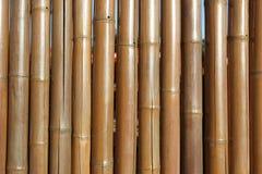 Frontière de sécurité en bambou Photographie stock