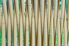 Frontière de sécurité en bambou Images stock