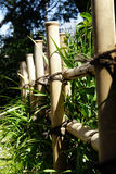 Frontière de sécurité en bambou image stock