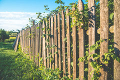 Frontière de sécurité en bois Photos libres de droits