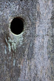 Frontière de sécurité en bois avec le knothole Photos libres de droits