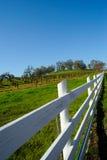 Frontière de sécurité et vigne en bois blanches Photographie stock