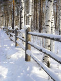 Frontière de sécurité sous la neige Photo libre de droits