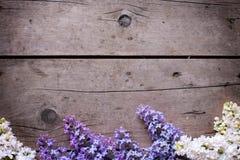 Frontière des fleurs lilas de ressort sur les planches en bois de vintage Photo stock