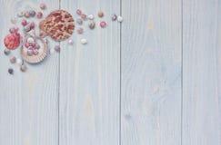 Frontière faisante le coin d'été avec des coquillages sur les planches en bois minables Image stock
