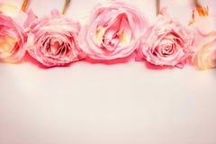 Frontière florale de rose de rose avec l'éclairage de bokeh, couleur en pastel, salutation Images stock