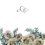 Frontière florale de vintage pour votre texte Images libres de droits