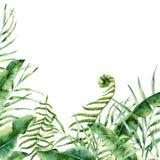 Frontière florale exotique d'aquarelle Cadre tropical peint à la main avec les feuilles de palmier, la branche de fougère, la ban Images libres de droits