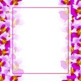 Frontière pourpre de carte de Vanda Miss Joaquim Orchid Banner Fleur de ressortissant de Singapour Illustration de vecteur illustration libre de droits
