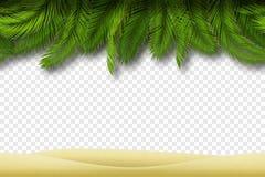 Frontière sans couture de plage Vecteur Images libres de droits