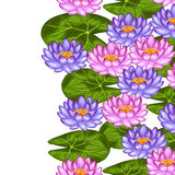 Frontière sans couture naturelle avec des fleurs et des feuilles de lotus Fond fait sans masque de coupage Facile à utiliser pour Image stock