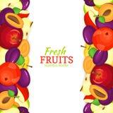 Frontière sans couture verticale de prune d'Apple Illustration de vecteur illustration libre de droits