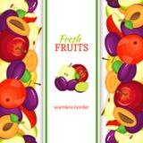 Frontière sans couture verticale de prune d'Apple Illustration de vecteur illustration stock